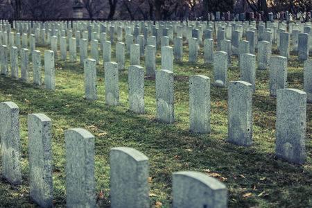 Concime per i campi fatto con i cadaveri: una bella trovata o un abominio?
